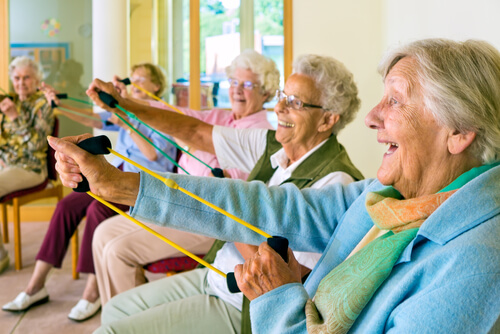 Physical Exercise For Seniors